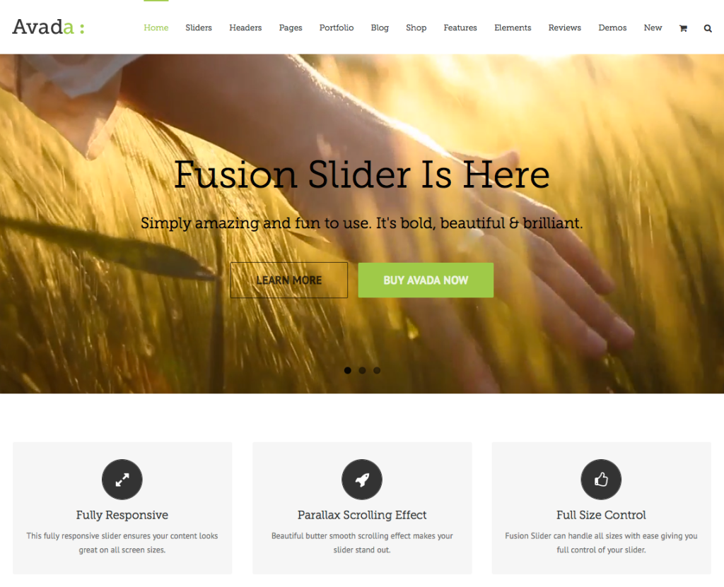 Theme Forest Themes - Professional WordPress Themes