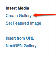 Create a WordPress Gallery